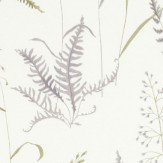 iliv Botanica Heather  Wallpaper