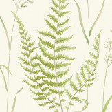 iliv Botanica Willow Wallpaper
