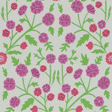 Sanderson Candytuft Brights / Multi Wallpaper