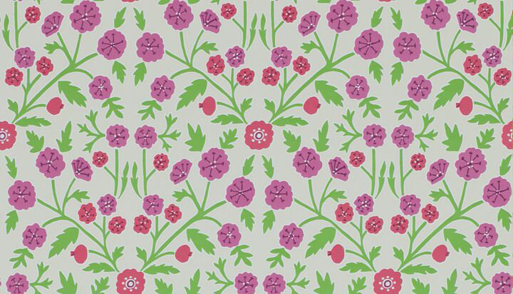 Sanderson Candytuft Brights / Multi Wallpaper - Product code: 214760