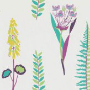 Sanderson Floral Bazaar Fig / Multi Wallpaper - Product code: 214772