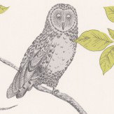 Albany Little Owl Grey / Green Wallpaper