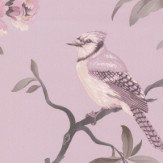 Albany Bird Song Pink Wallpaper