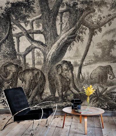 Paper Moon Murals Elephants, 4400093