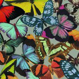 Albany Butterfly Grove Multi Wallpaper