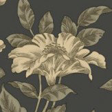 Albany Bertuccia Black Wallpaper - Product code: 98110