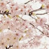 Coordonne Almond Tree Pink Mural