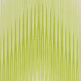 Matthew Williamson Danzon Lime Wallpaper