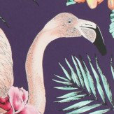 Matthew Williamson Flamingo Club Purple, Cerise, Coral & Jade Wallpaper