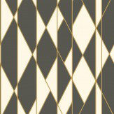 Cole & Son Oblique Black and White Wallpaper - Product code: 105/11049