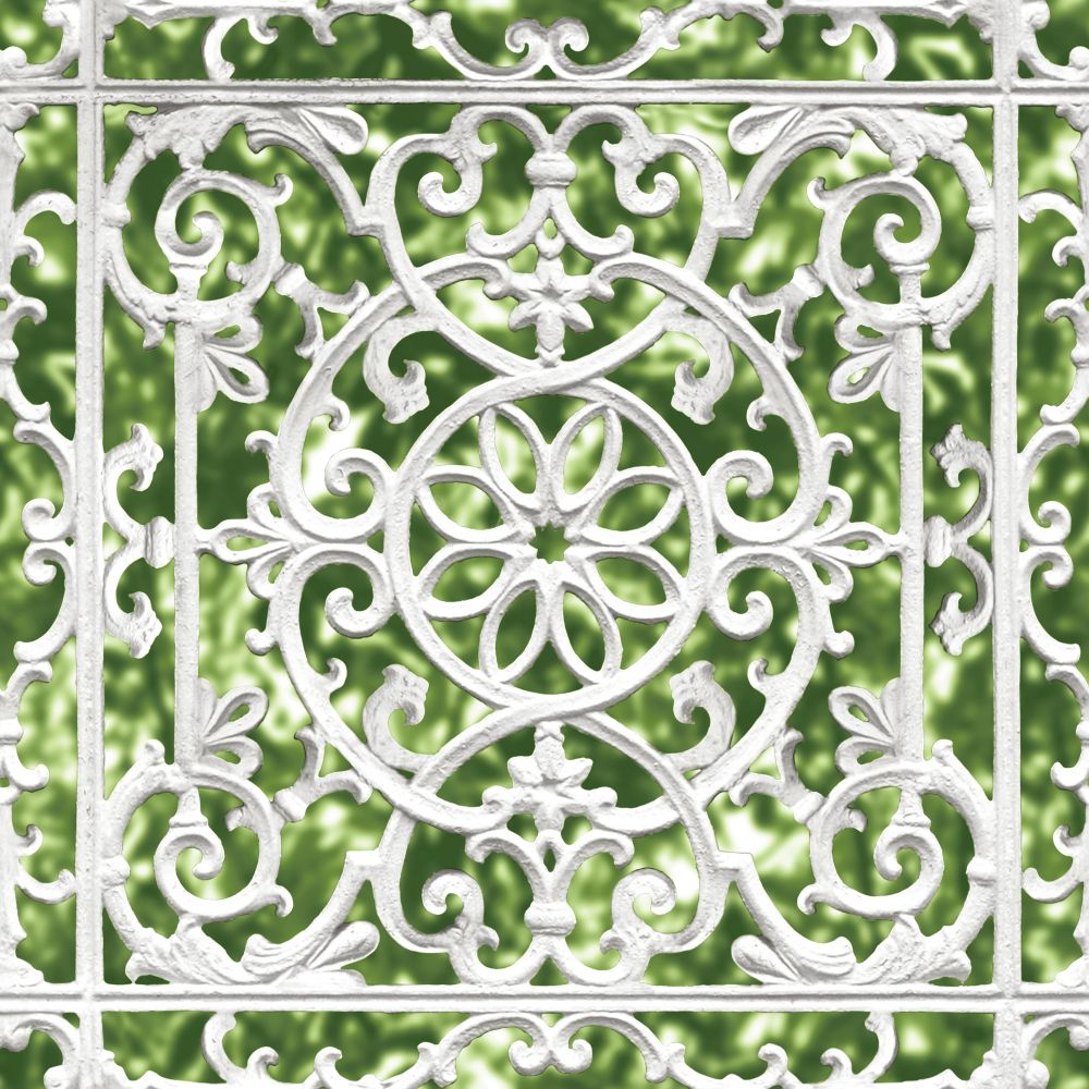 Ironwork trellis by albany green and white wallpaper direct - Papier peint little green ...