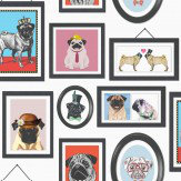 Albany Pugs Life Multi / White Wallpaper