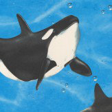 Albany Orca Blue Wallpaper