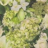 Albany Green Flora Wallpaper