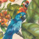 Albany Exotic Parrots Beige Multi-Coloured Wallpaper