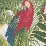 Albany Parrots & Palms Red, Yellow & Green Wallpaper