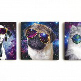 Arthouse Space Animals Set of 3 Canvas Multi Art