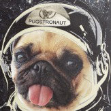 Arthouse Space Pug Canvas Multi Art - Product code: 004158