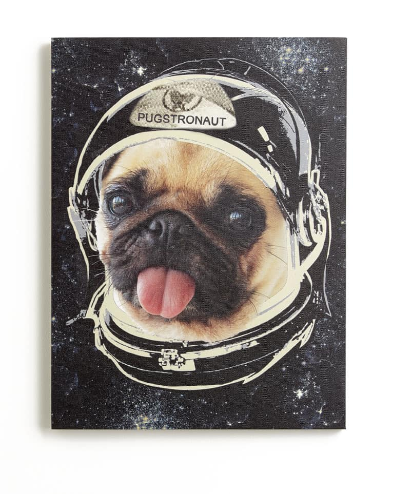 Arthouse Space Pug Canvas Multi Art main image