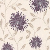 Albany Chrysanthemum Trail Purple Wallpaper