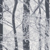 Frosted Wood