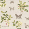 Prestigious Botany Acacia Fabric - Product code: 5758/671