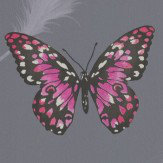 Albany Butterflies Charcoal & Pink Wallpaper