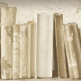 Albany Vintage Bookcase Neutral Cream Wallpaper