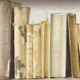 Albany Vintage Bookcase Neutral Beige Wallpaper
