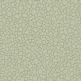 Cole & Son Pebble Pale Olive Wallpaper