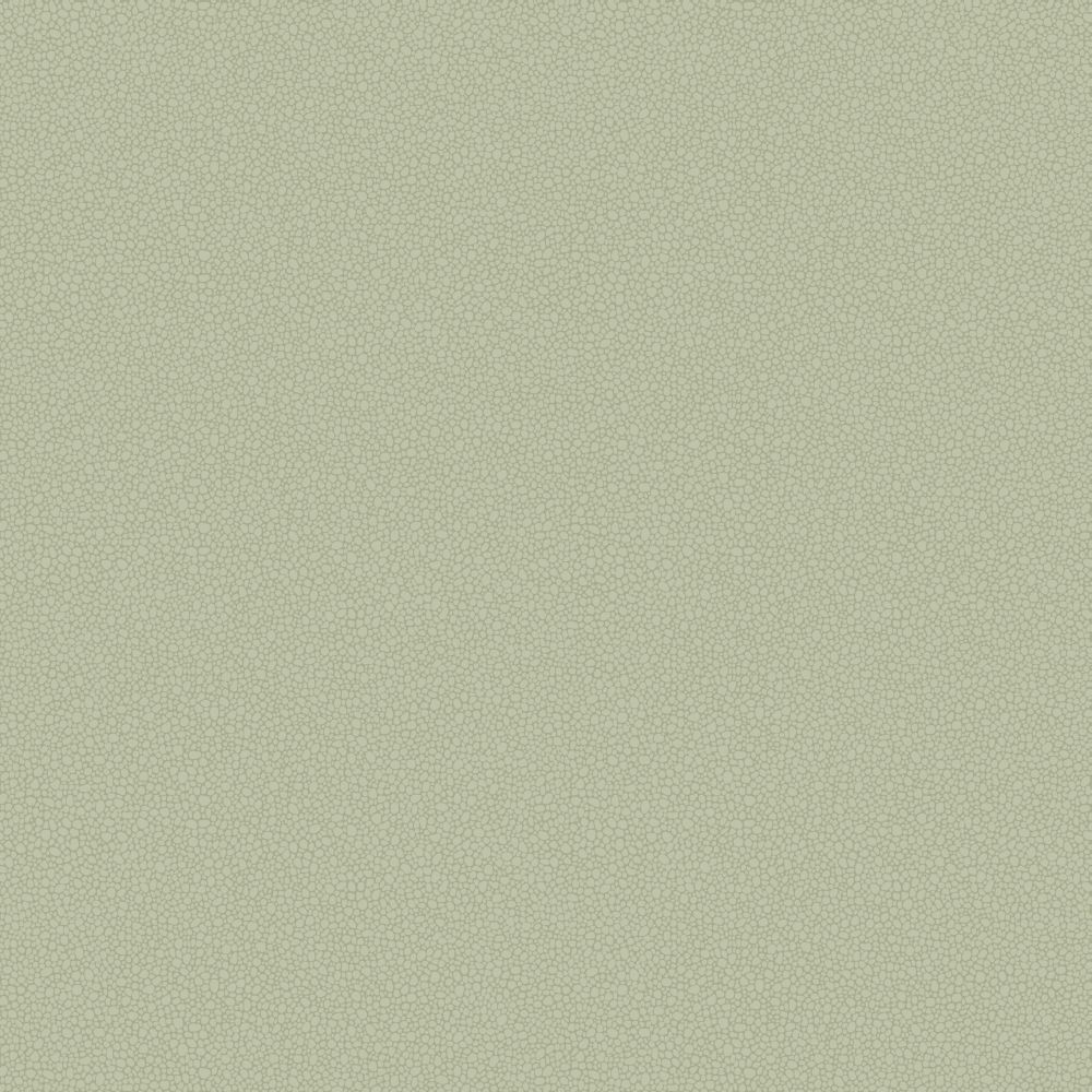 Cole & Son Pebble Pale Olive Wallpaper - Product code: 106/2027