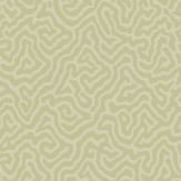 Cole & Son Coral Old Olive Wallpaper
