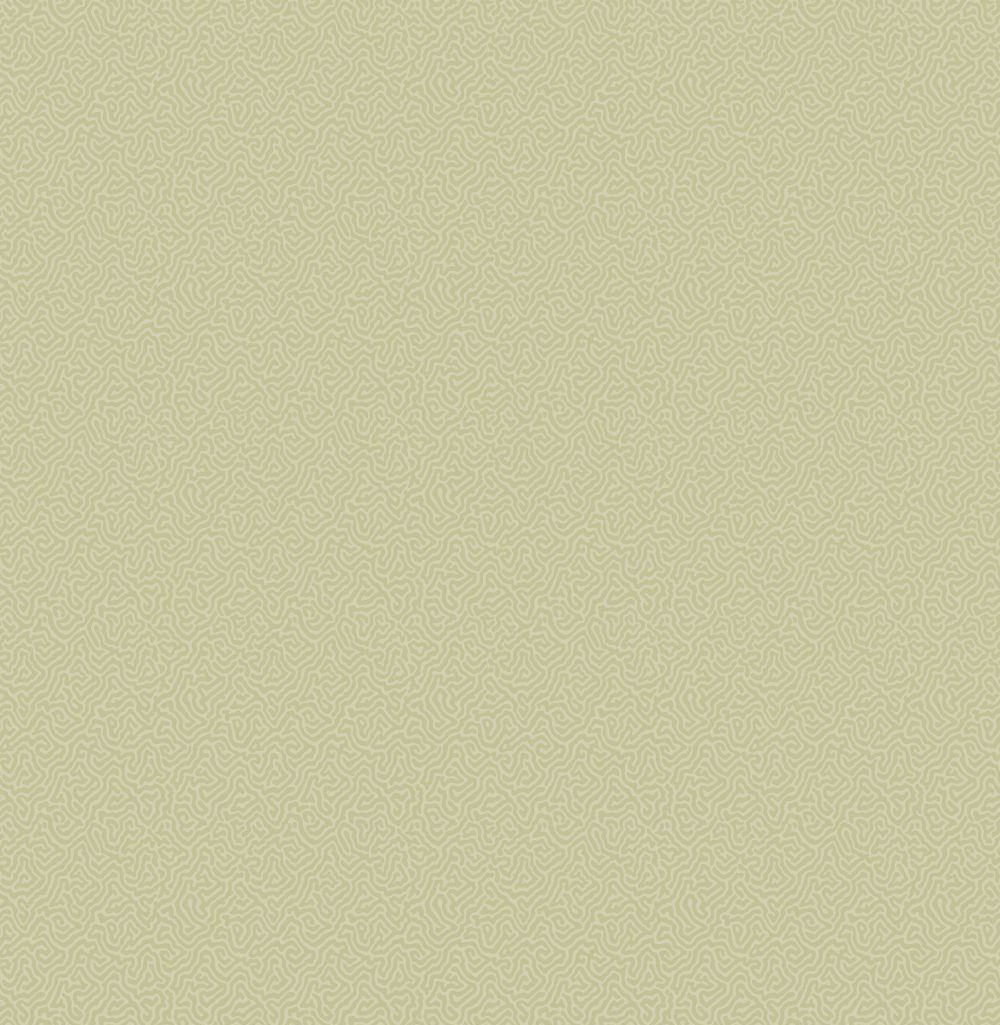 Cole & Son Coral Old Olive Wallpaper - Product code: 106/5067