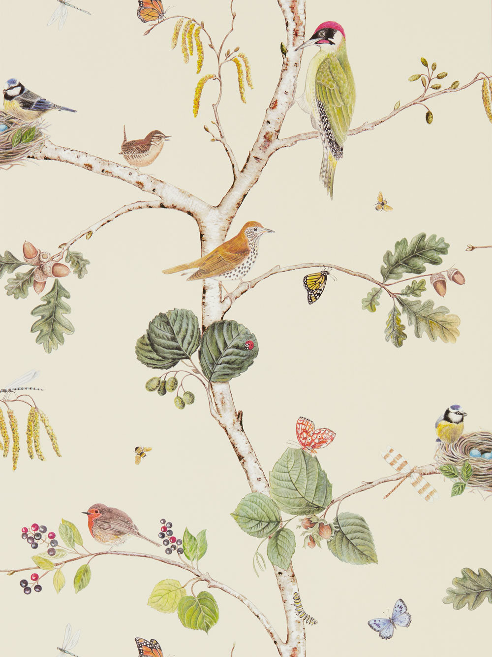Sanderson Woodland Chorus Cream Wallpaper main image