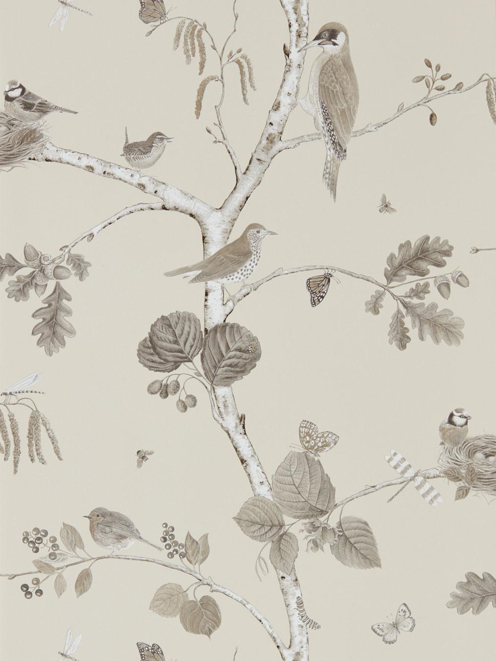 Sanderson Woodland Chorus Sepia Wallpaper - Product code: 215704