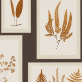Sanderson Fern Gallery Charcoal Wallpaper