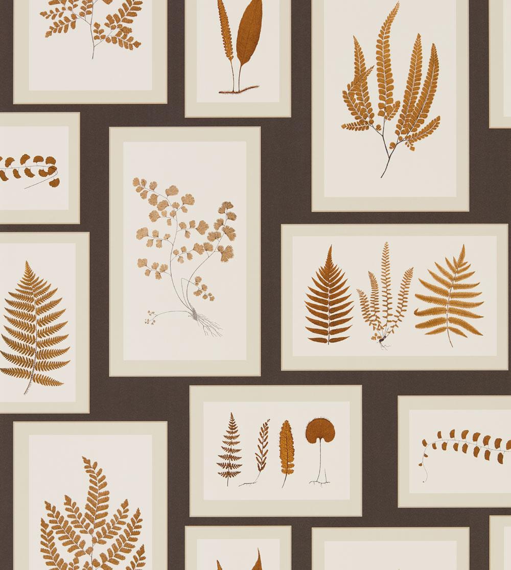Sanderson Fern Gallery Charcoal Wallpaper - Product code: 215713