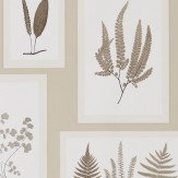 Sanderson Fern Gallery Linen Wallpaper
