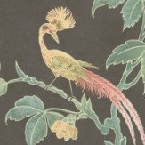 Little Greene Paradise Ebony Wallpaper