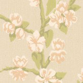 Little Greene Sakura Cream Wallpaper