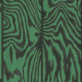 Cole & Son Zebrawood Emerald Wallpaper