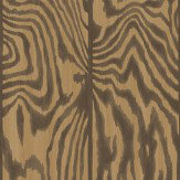 Cole & Son Zebrawood Tiger Wallpaper