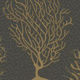 Cole & Son Seafern Black / Gold Wallpaper