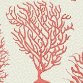 Cole & Son Seafern Coral Wallpaper