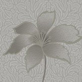 Albany Floriana Grey Wallpaper