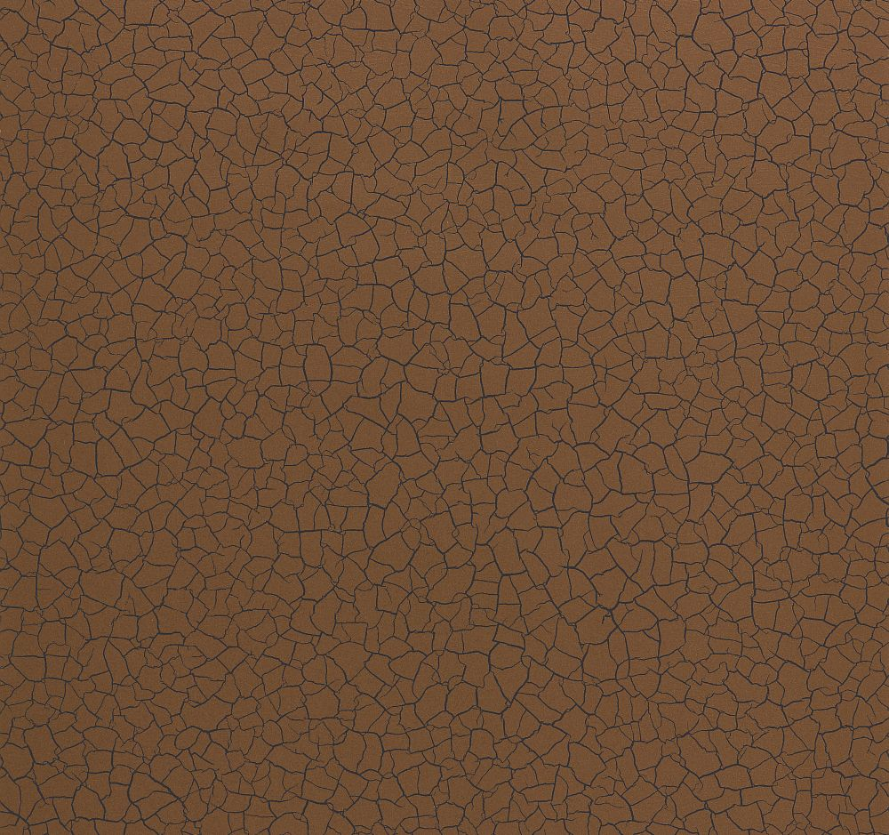 Zoffany Cracked Earth Sahara Wallpaper main image