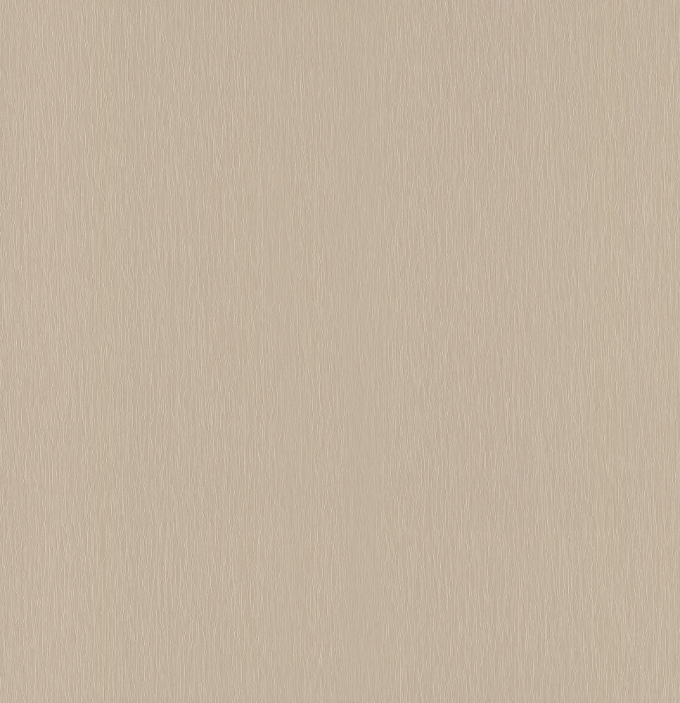 Casadeco Textured Plain Light Taupe Wallpaper - Product code: 16941503