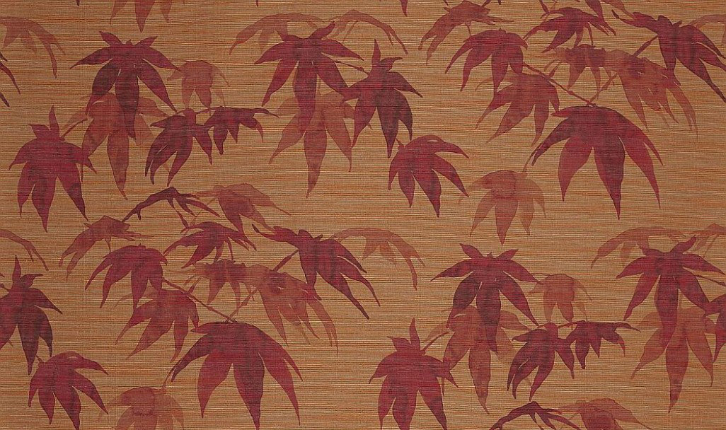 Image of Zoffany Wallpapers Acer, 312496