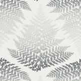 Clarissa Hulse Filix Smoke / Graphite Wallpaper