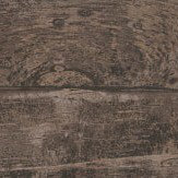 Carlucci di Chivasso Goia Chocolate Wallpaper - Product code: CA8244/021